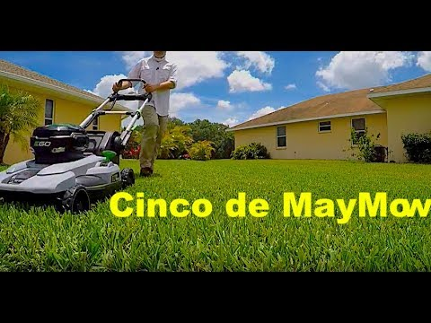 """Ego 21"""" Self Propelled Mower Review 