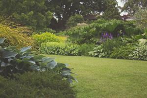 Maintaining a healthy garden - TO