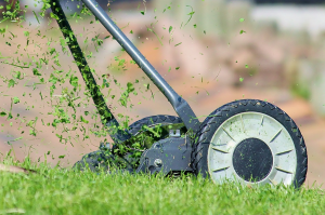 Lawn Mower Maintenance - Tools Official